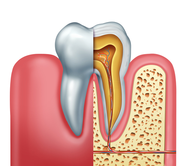 Root Canals Independence, Blue Springs, Lee's Summit MO